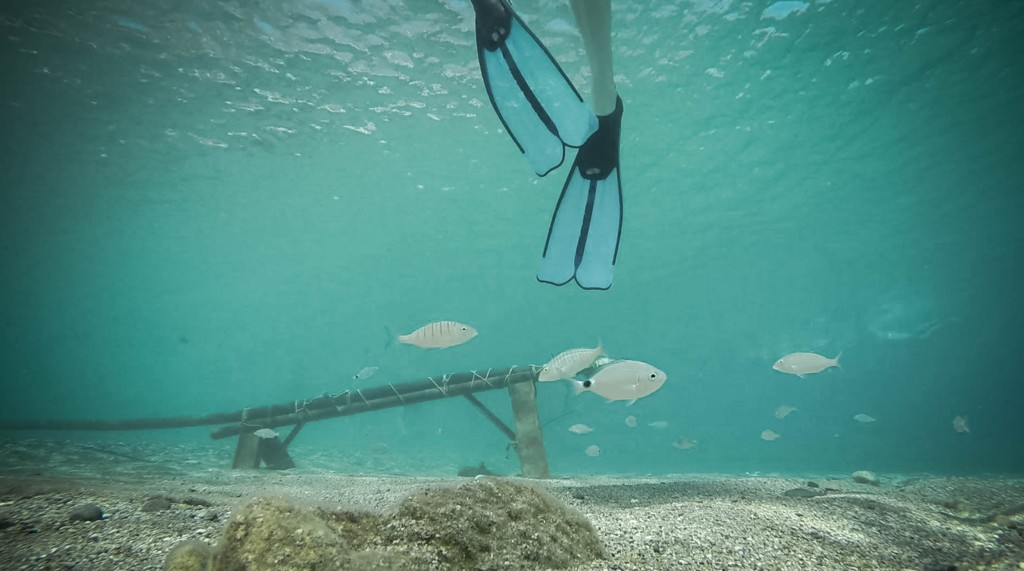 underwater-3